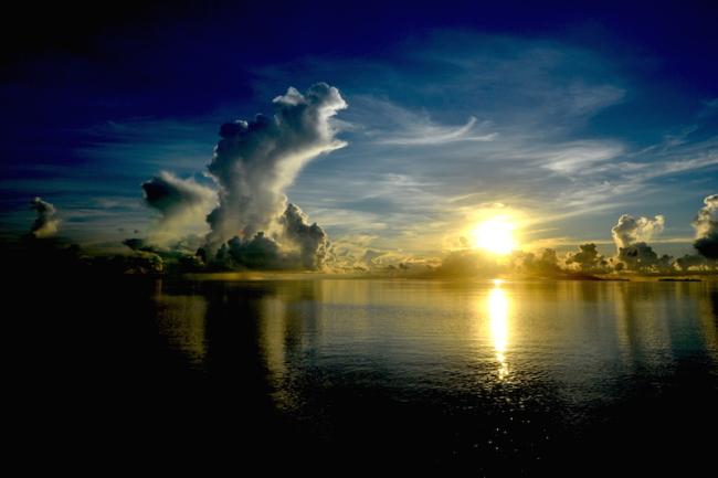 西表島の日常の風景