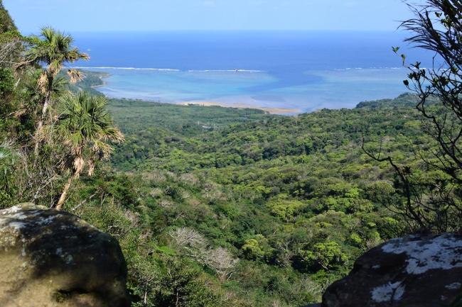 西表島ジャングル・トレッキングユツン3段の滝/石垣島より日帰り可能/手ぶらok!/カヌーなし/沖縄旅行/雨の日も開催/ケーピング西表島でジャングルトレッキングなら『のんぷら』へ。石垣島より参加可能。雨の日でも開催しております。 カップル、1人旅からファミリーまで最高の沖縄旅行の思い出作りに。レンタル用品全て無料!手ぶら参加ok!
