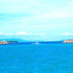 カヌーツアー&水牛車観光(由布島)