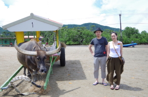カヌー&水牛車観光(由布島)