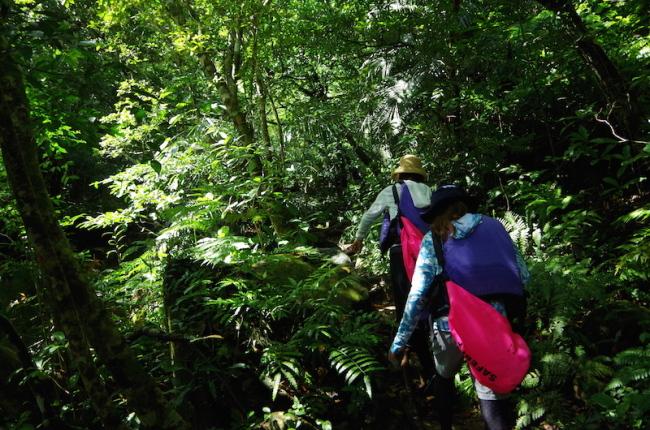 流される木の葉のように。。。西表島カヌーツアー