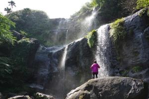 西表島ジャングル・トレッキングユツン3段の滝/石垣島より日帰り可能/手ぶらok!/カヌー・カヤック・キャニオニングツアー/沖縄旅行/雨の日も開催/ケーピング西表島でジャングルトレッキングなら『のんぷら』へ。石垣島より参加可能。雨の日でも開催しております。 カップル、1人旅からファミリーまで最高の沖縄旅行の思い出作りに。レンタル用品全て無料!手ぶら参加ok!