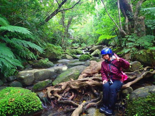 西表島トレッキングツアー/石垣島より日帰り可能/手ぶらok!/カヌー、カヤックツアー/沖縄旅行/雨の日も開催/西表島でトレッキングツアーは『のんぷら』へ。 カップル、1人旅からファミリーまで最高の沖縄旅行の思い出作りに。