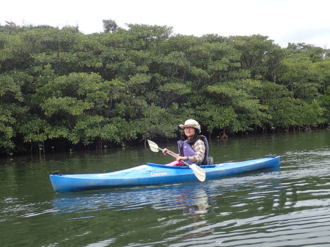 "riomote Island canoe tours ""nonpura"""