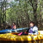 マングローブ林の中は満潮時だけの特権!西表島カヌーツアー