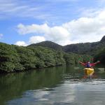 西表島 カヌーツアー ピナイサーラの滝ツアー 一人旅